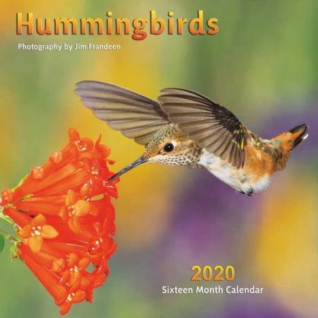 2020 Calendar Hummingbirds