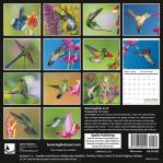 2018 Calendar Hummingbirds