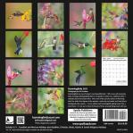 hummingbirds 2021 calendar
