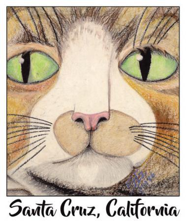 santa cruz cat sticker decal