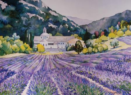 lavendar-field.jpg