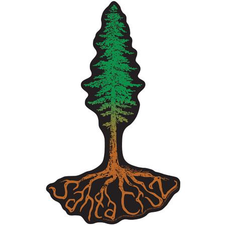 Santa Cruz Sticker Tim Ward Redwood Tree