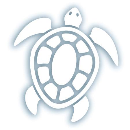 tim ward sticker decal vinyl turtle