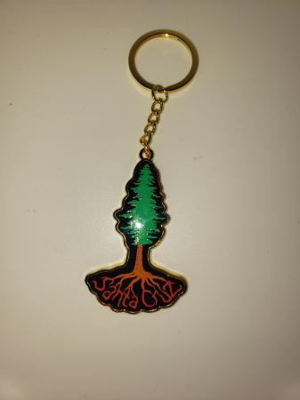 santa cruz redwood tree magnet tim ward