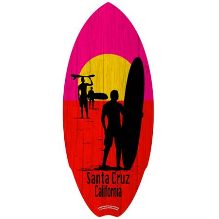 santa cruz endless summer mini surfboard