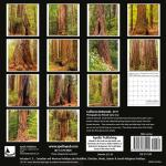 california redwoods calendar 2017 michael santa cruz
