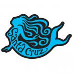 tim ward patch santa cruz mermaid