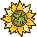 Tim Ward magnet sunflower santa cruz